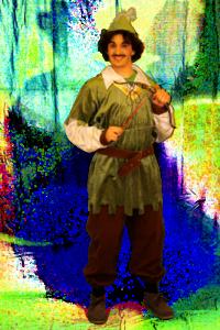 135 robin hood elfo